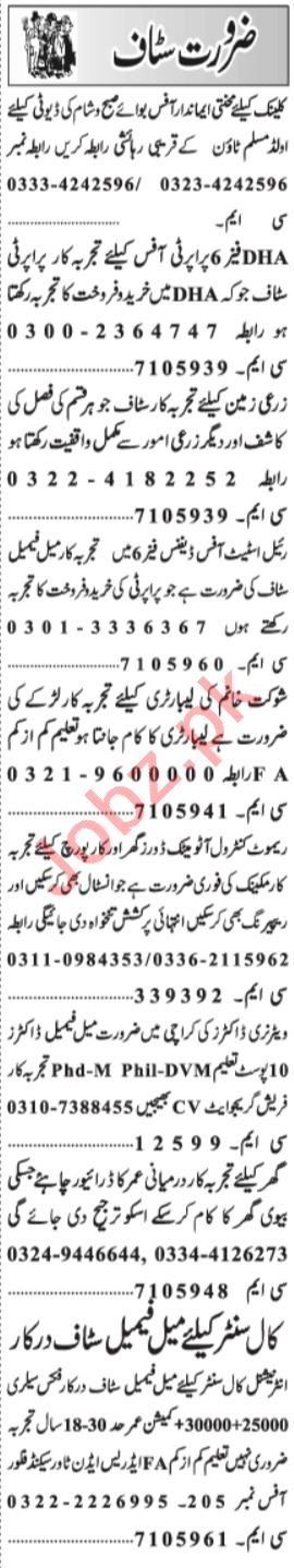 Graphic Designer & Office Assistant Jobs 2021 in Lahore