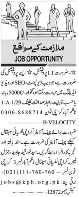 IT Professional & Chief Auditor Jobs 2021 in Karachi