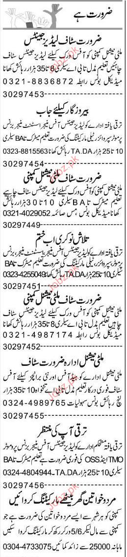 Office Manager, Assistant Manager, Business Promoters Wanted