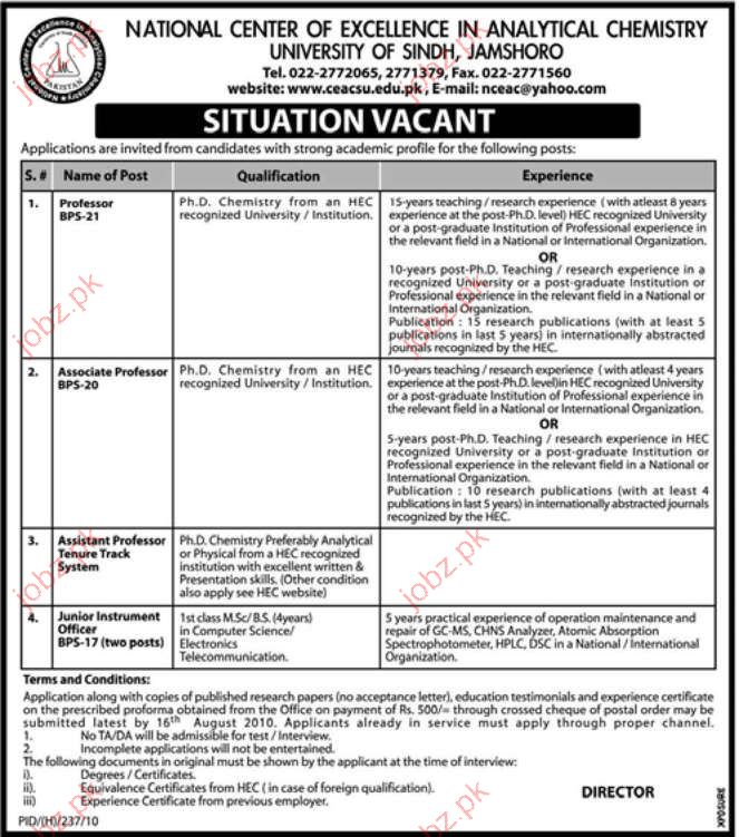 Professor Job Opportunities in University Of Sindh Jamshoro