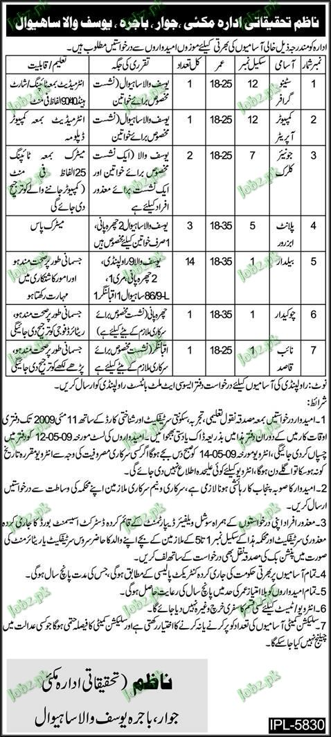 Research Department Jobs