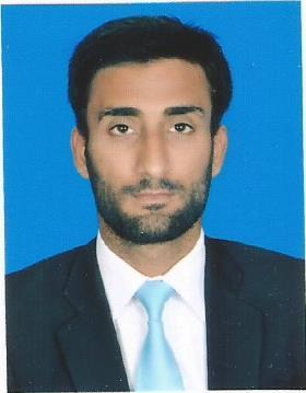 Zeeshan Hamid Malik Finite Element Analysis