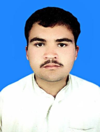 Majid Ullah Technical Support, Telecommunications Engineering, Electronics, Communications