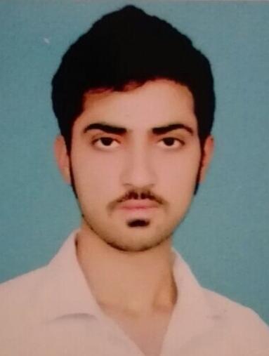 Masoud Sultan Remote Sensing, Engineering