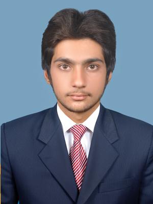 Sarfraz Ali Research, Powerpoint, Editing, Communications, Copy Typing, Copywriting, Dutch, English (UK), English (US), Hindi